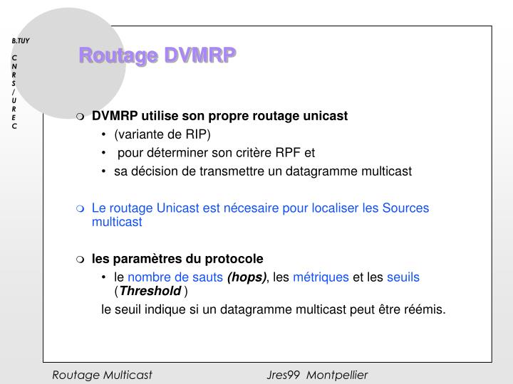 Routage DVMRP
