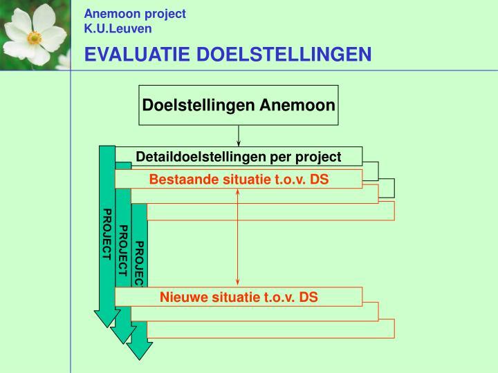 Detaildoelstellingen per project