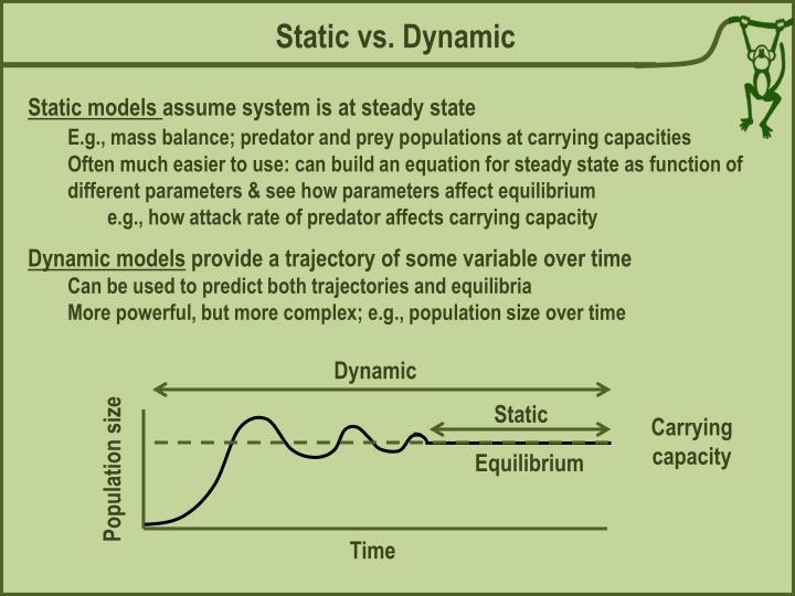 Static vs. Dynamic
