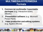 multimedia hypermedia formats