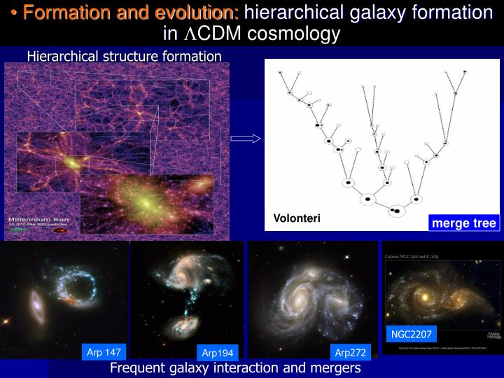 Formation and evolution hierarchical galaxy formation in cdm cosmology