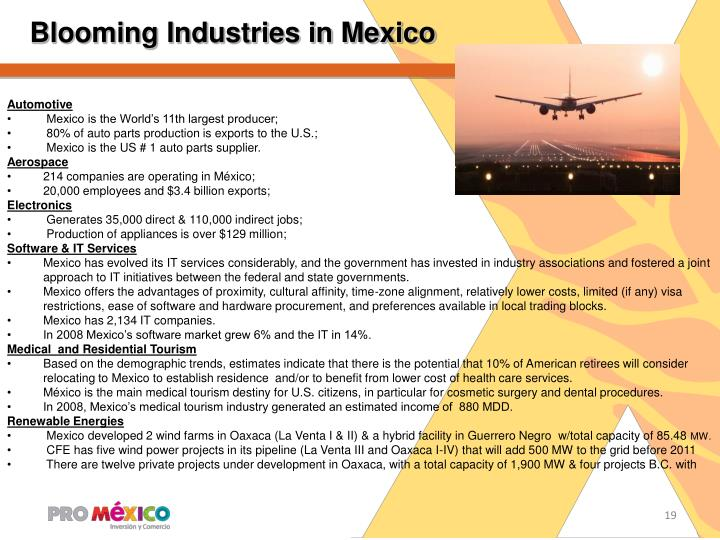 Blooming Industries in Mexico