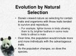 evolution by natural selection3