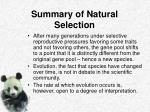summary of natural selection2