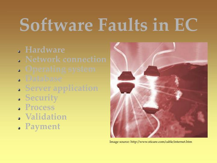 Software Faults in EC