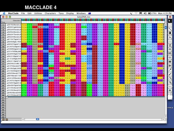 MACCLADE 4