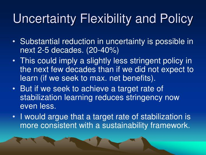 Uncertainty Flexibility and Policy