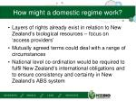 how might a domestic regime work