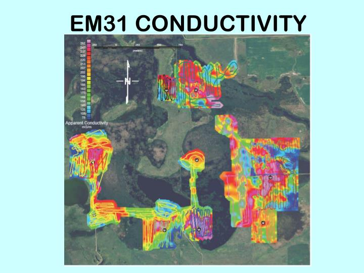 EM31 CONDUCTIVITY