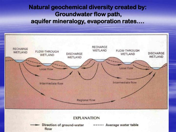 Natural geochemical diversity created by: