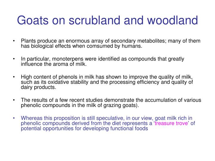 Goats on scrubland and woodland