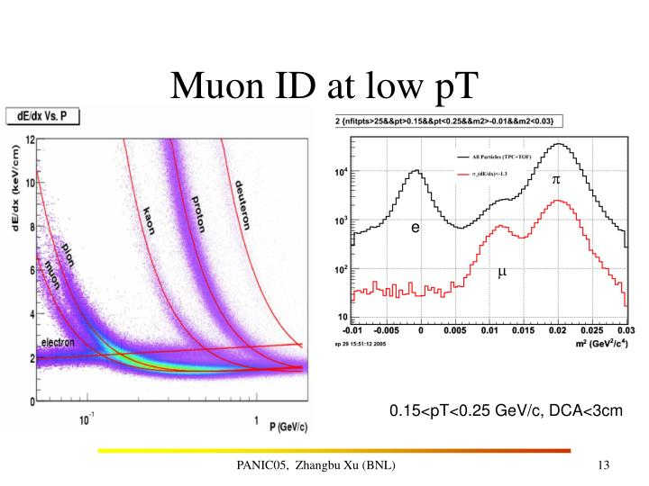 Muon ID at low pT