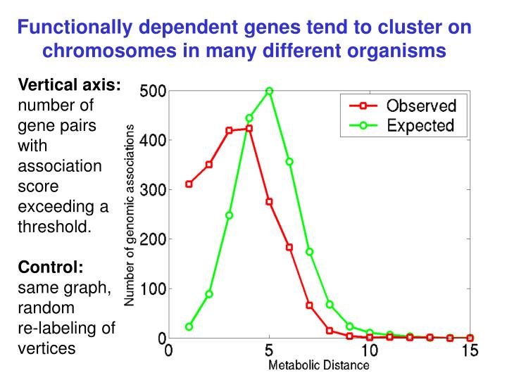 Functionally dependent genes tend to cluster on chromosomes in many different organisms