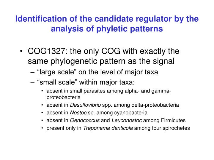 Identification of the candidate regulator by the analysis of phyletic patterns