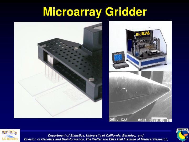 Microarray Gridder