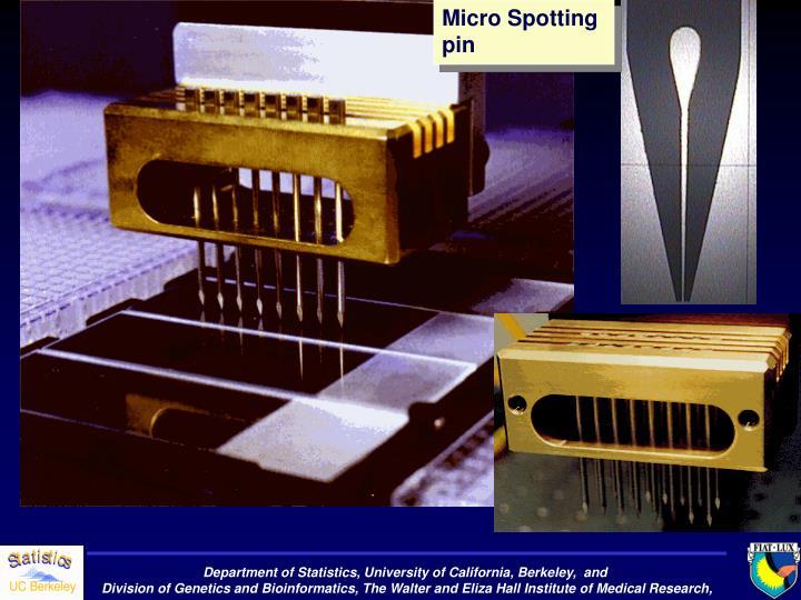 Micro Spotting  pin