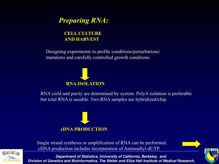 Preparing RNA: