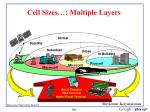 cell sizes multiple layers