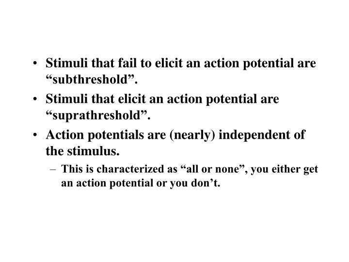 """Stimuli that fail to elicit an action potential are """"subthreshold""""."""