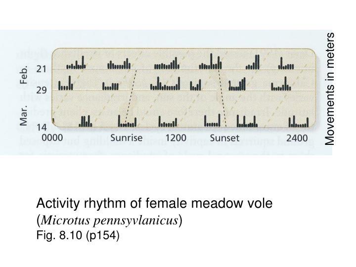 Movements in meters