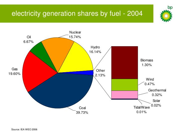 electricity generation shares by fuel - 2004