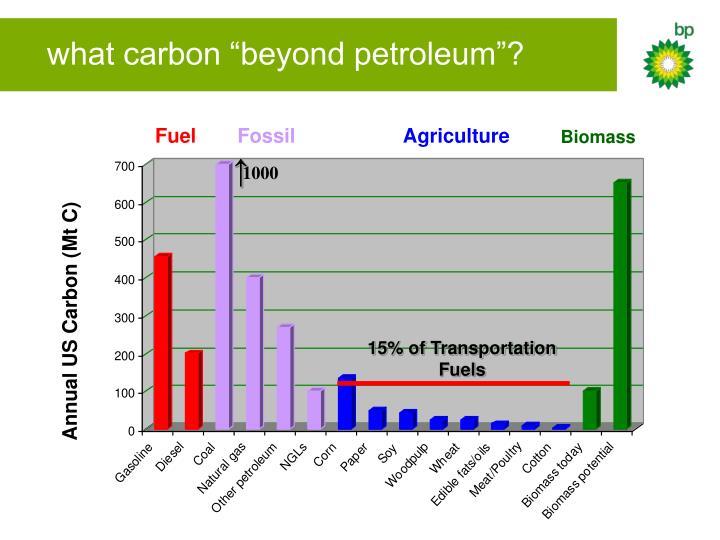 """what carbon """"beyond petroleum""""?"""