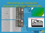 herkenning van biologische structuren dmv hoge resolutie data