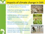 impacts of climate change in saa