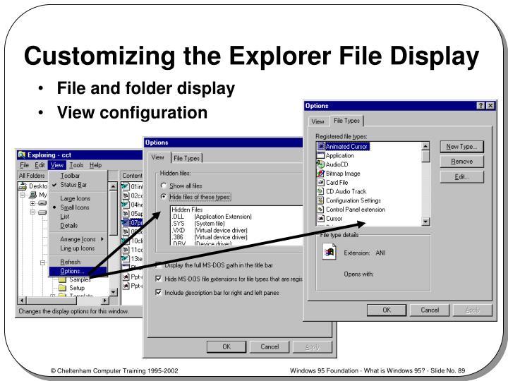 Customizing the Explorer File Display