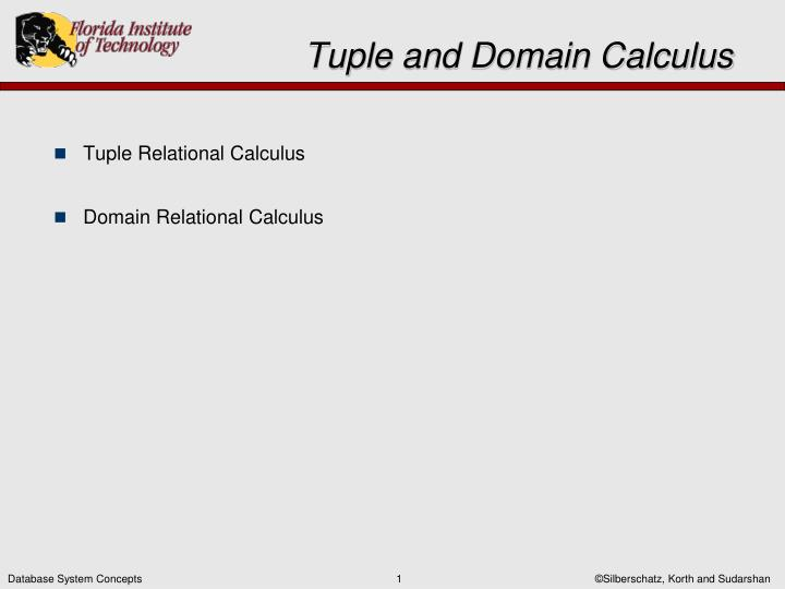 tuple and domain calculus n.