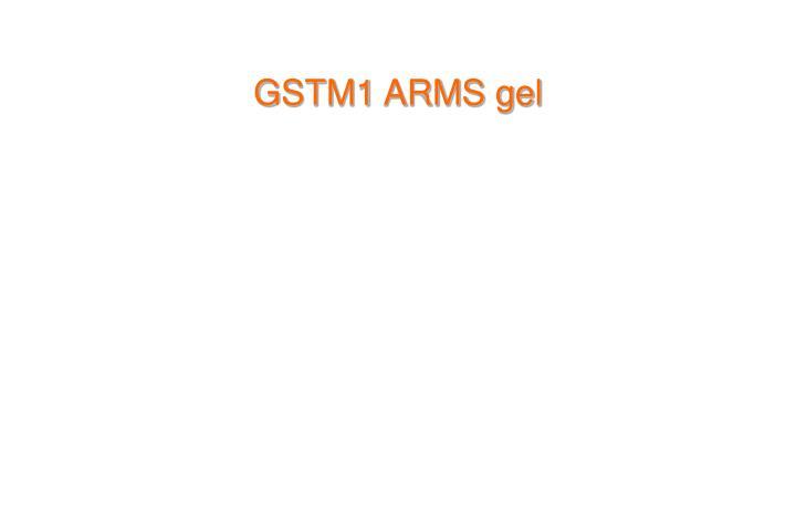 GSTM1 ARMS gel