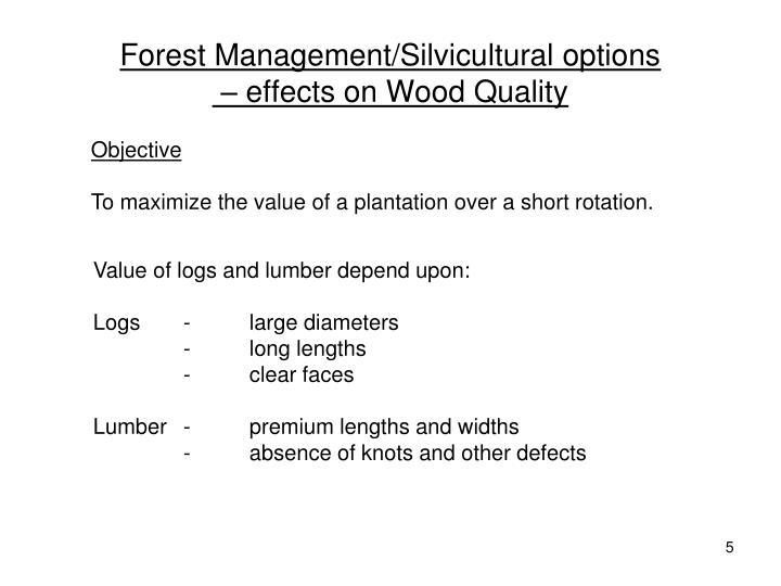 Forest Management/Silvicultural options