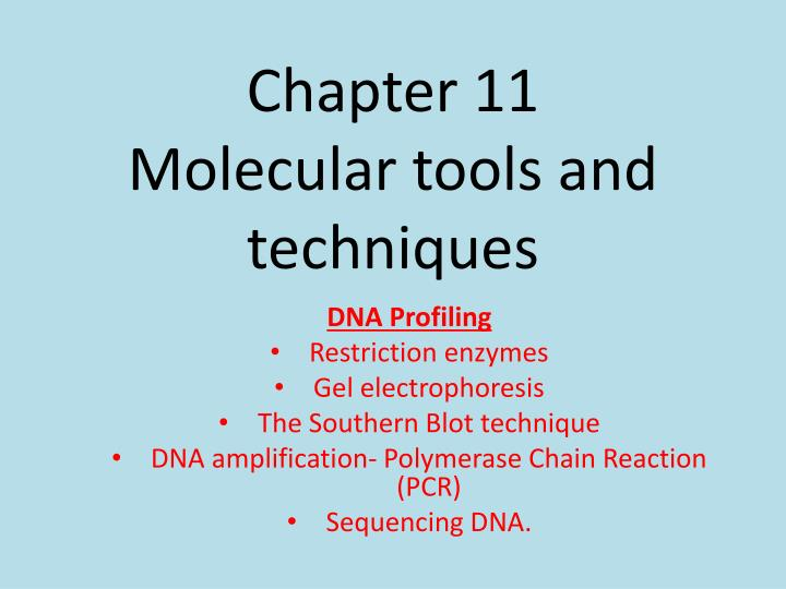 chapter 11 molecular tools and techniques n.