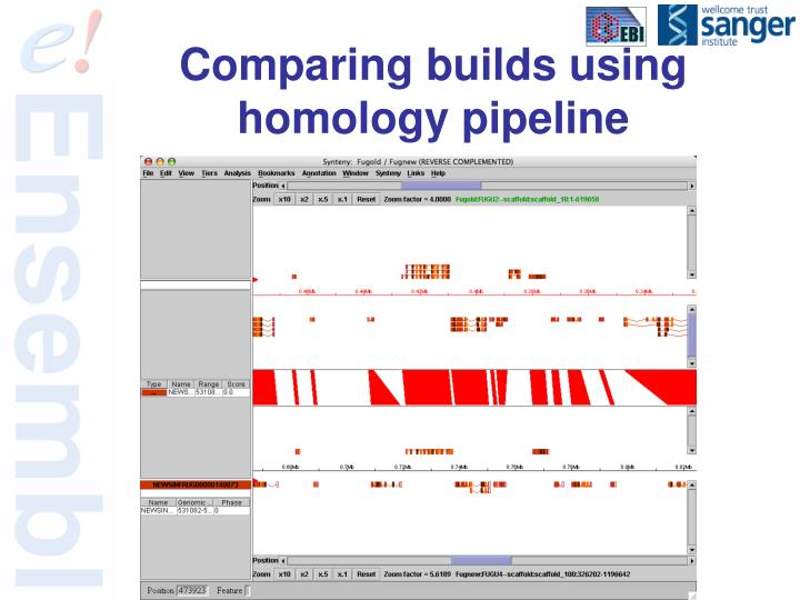 Comparing builds using homology pipeline