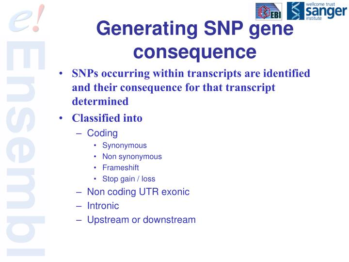 Generating SNP gene consequence