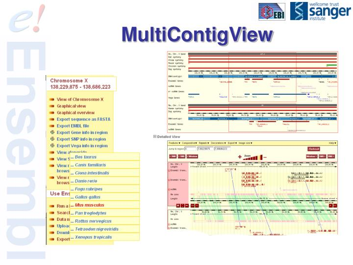 MultiContigView