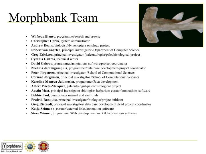 Morphbank team