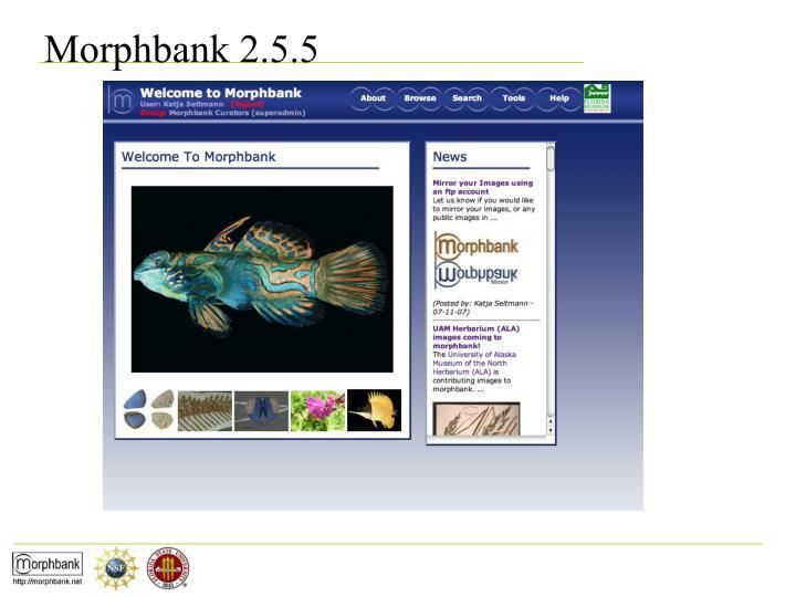 Morphbank 2.5.5