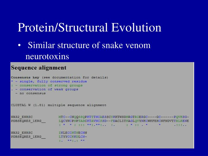 Protein/Structural Evolution