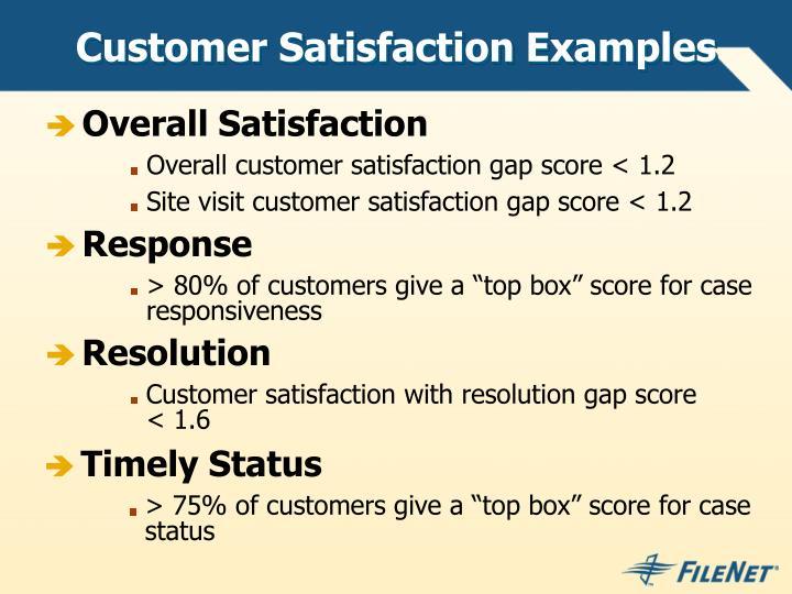 Customer Satisfaction Examples