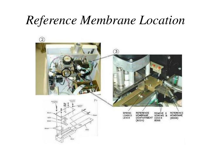 Reference membrane location