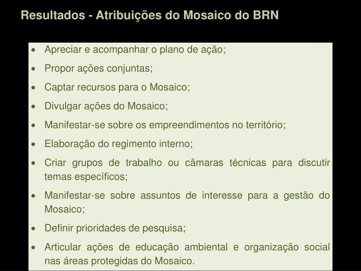 Resultados - Atribuições do Mosaico do BRN
