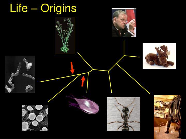 Life – Origins