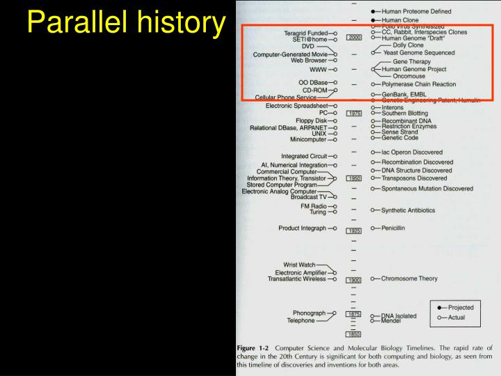 Parallel history