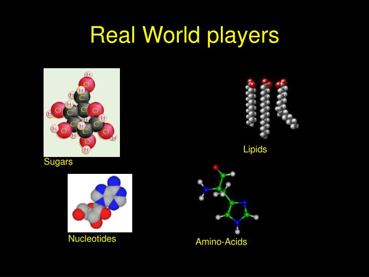 Real World players