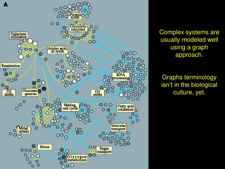 Complex systems are usually modeled well using a graph approach.