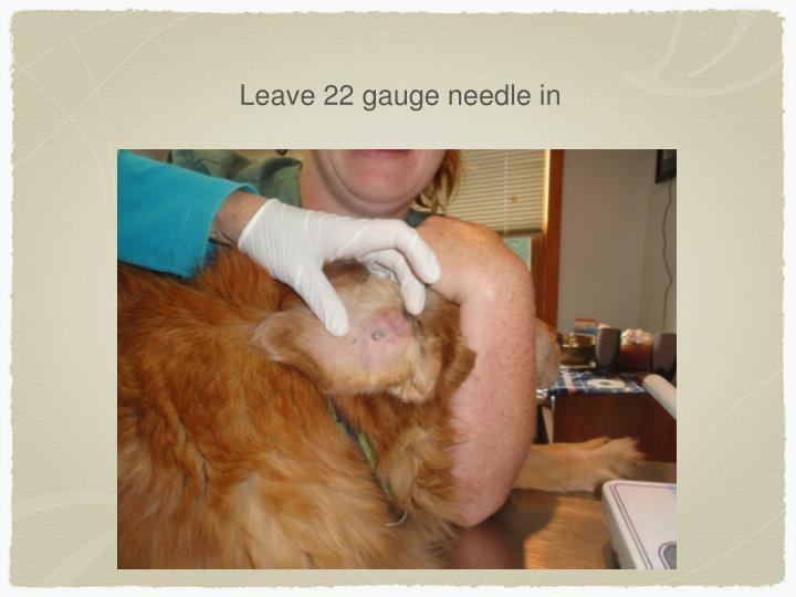 Leave 22 gauge needle in
