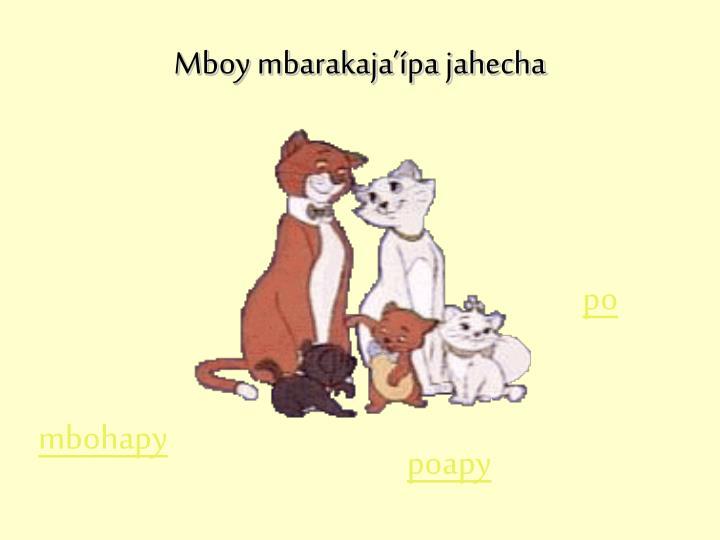 Mboy mbarakaja'ípa jahecha