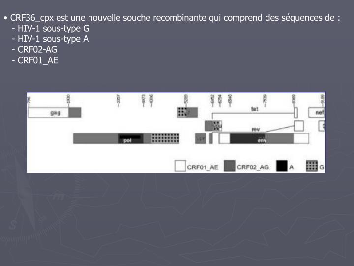 CRF36_cpx est une nouvelle souche recombinante qui comprend des séquences de :