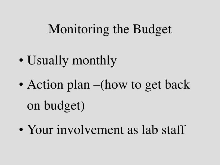 Monitoring the Budget